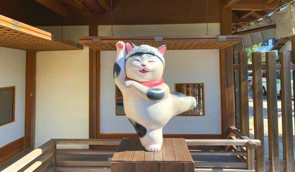 伊勢神宮おかげ横丁の猫